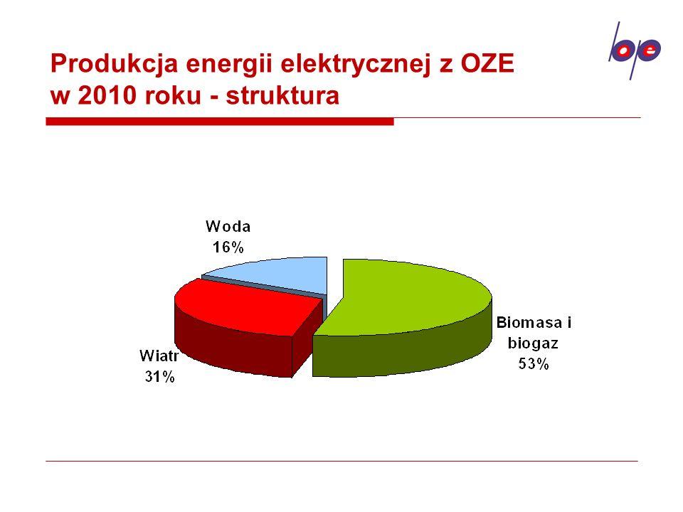 Produkcja energii elektrycznej z OZE w 2010 roku - struktura