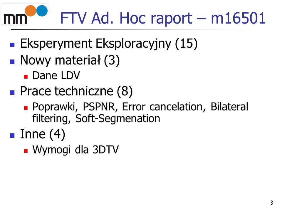 FTV Ad. Hoc raport – m16501 Eksperyment Eksploracyjny (15)