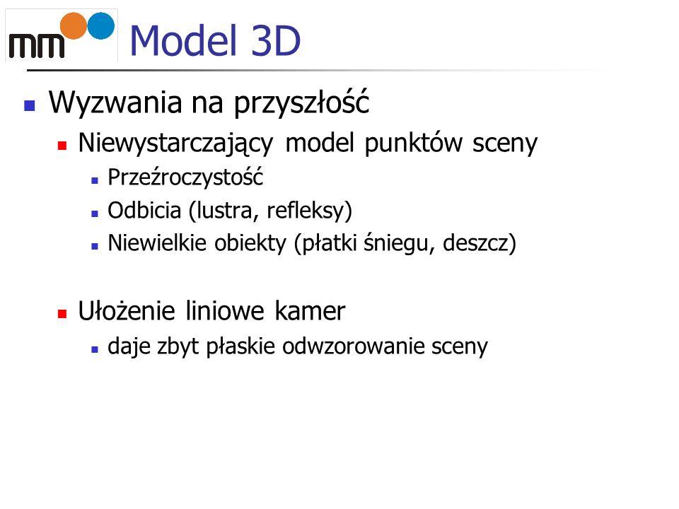 Model 3D Wyzwania na przyszłość Niewystarczający model punktów sceny