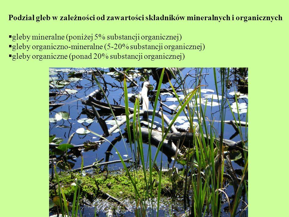 Podział gleb w zależności od zawartości składników mineralnych i organicznych