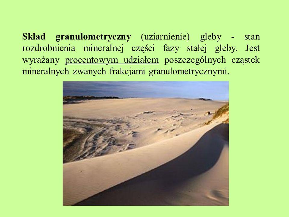 Skład granulometryczny (uziarnienie) gleby - stan rozdrobnienia mineralnej części fazy stałej gleby.