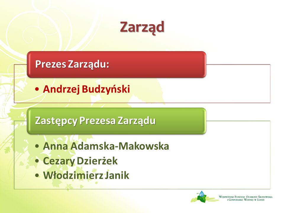 Zarząd Prezes Zarządu: Andrzej Budzyński Zastępcy Prezesa Zarządu