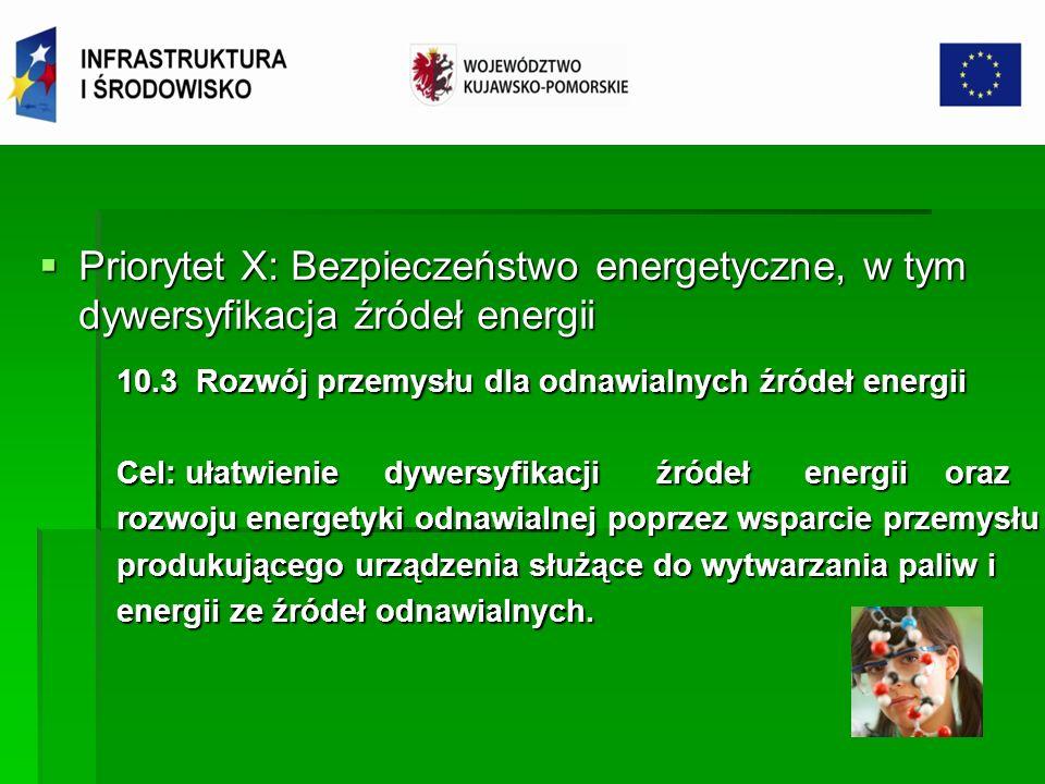 Priorytet X: Bezpieczeństwo energetyczne, w tym dywersyfikacja źródeł energii