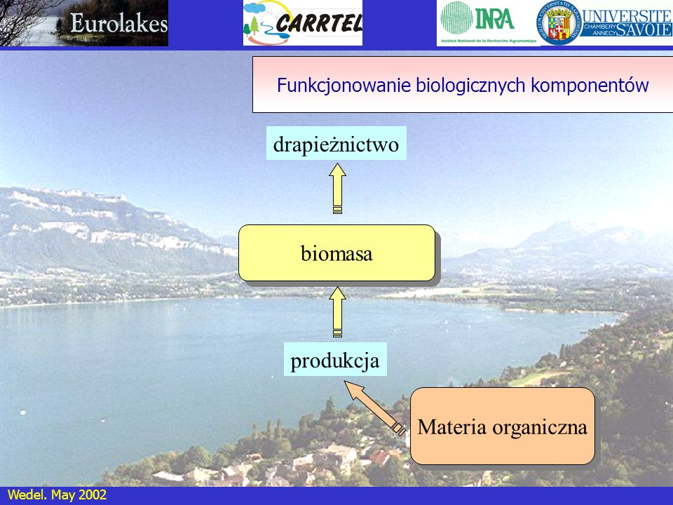 Funkcjonowanie biologicznych komponentów
