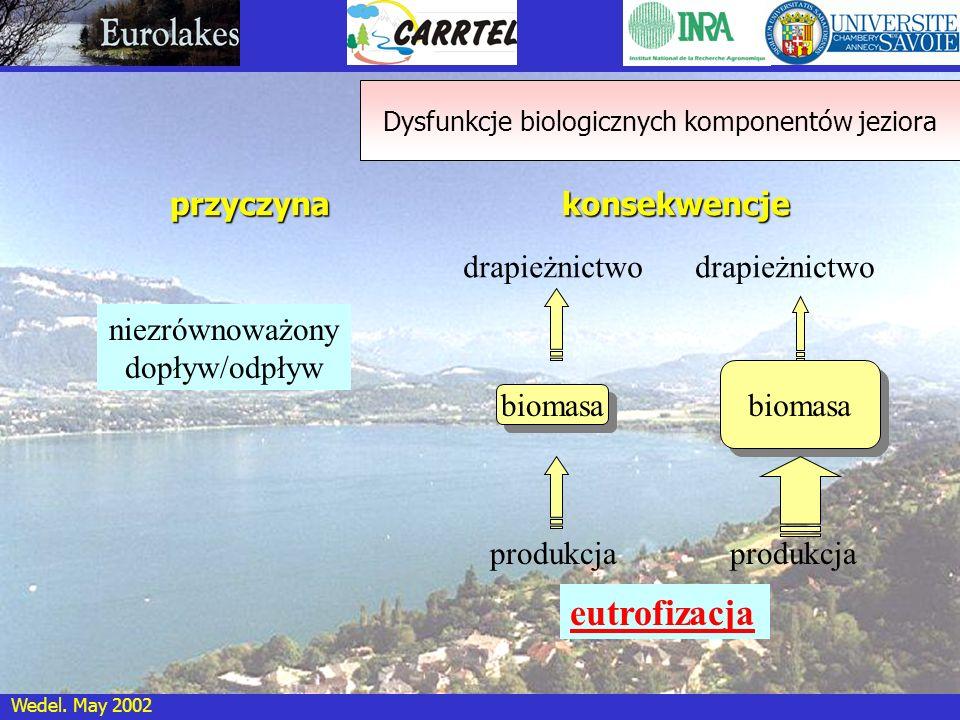 Dysfunkcje biologicznych komponentów jeziora