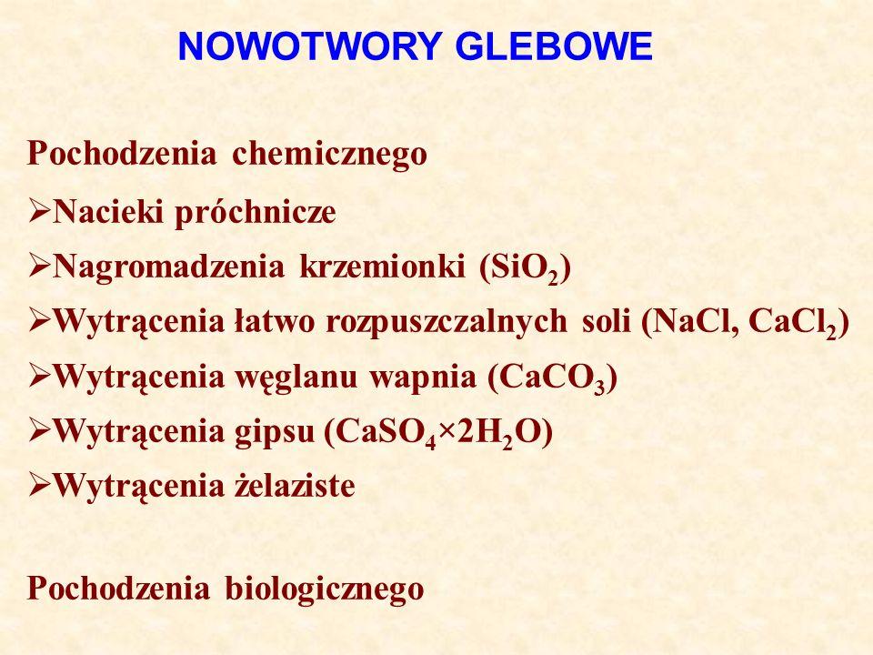 NOWOTWORY GLEBOWE Pochodzenia chemicznego Nacieki próchnicze