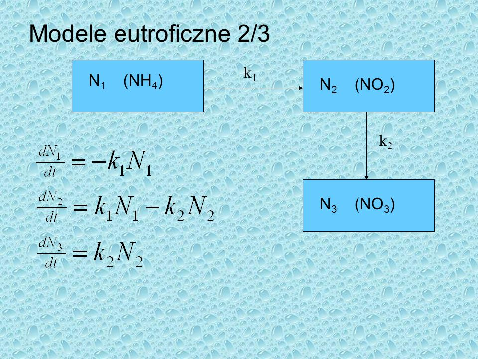 Modele eutroficzne 2/3 k1 N1 (NH4) N2 (NO2) k2 N3 (NO3)