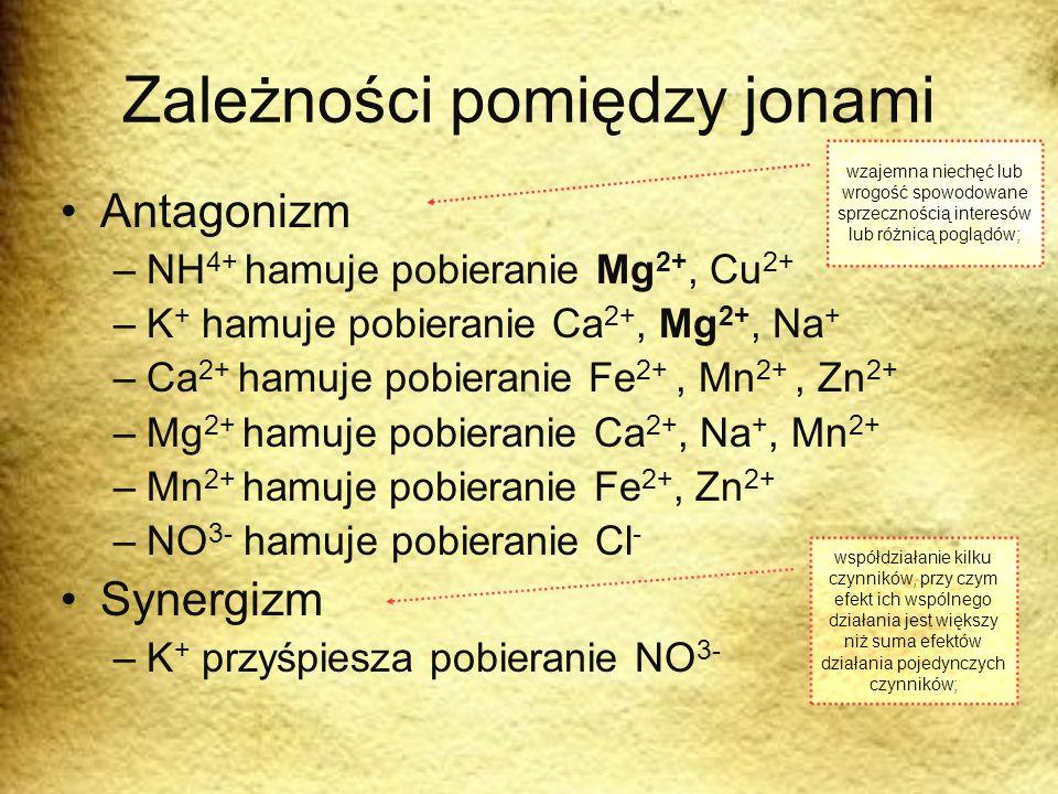 Zależności pomiędzy jonami