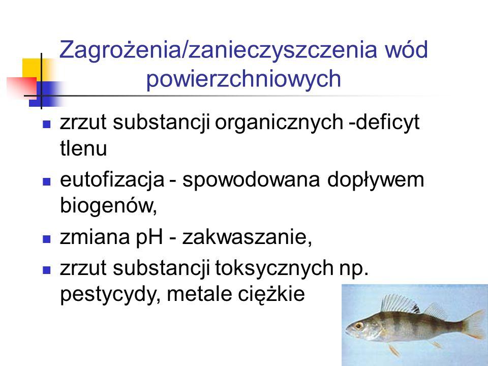 Zagrożenia/zanieczyszczenia wód powierzchniowych