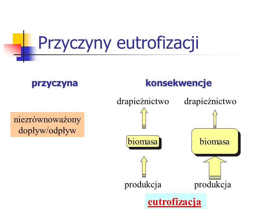 Przyczyny eutrofizacji