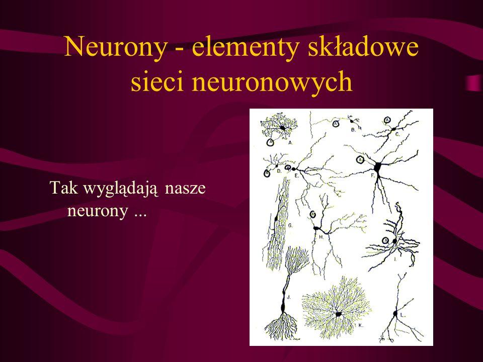 Neurony - elementy składowe sieci neuronowych