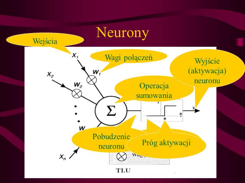 Wyjście (aktywacja) neuronu