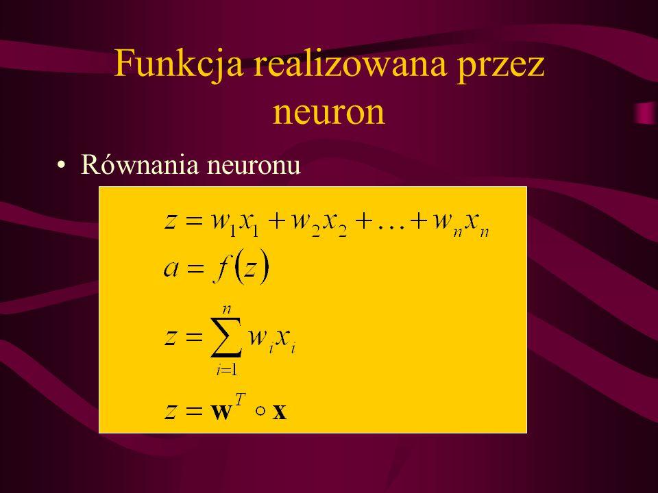 Funkcja realizowana przez neuron