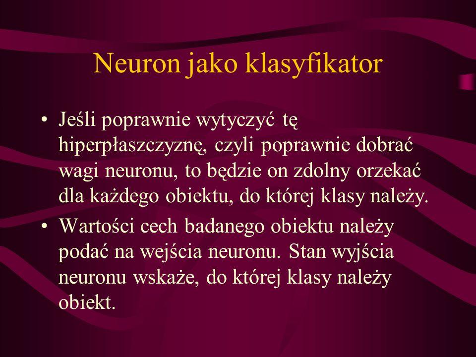 Neuron jako klasyfikator