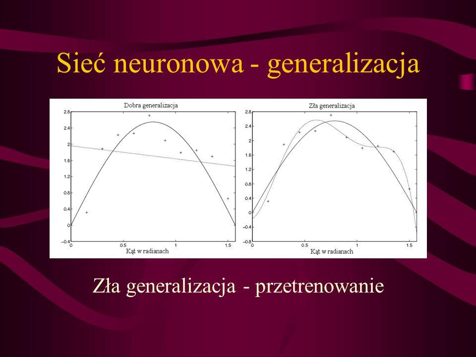 Sieć neuronowa - generalizacja