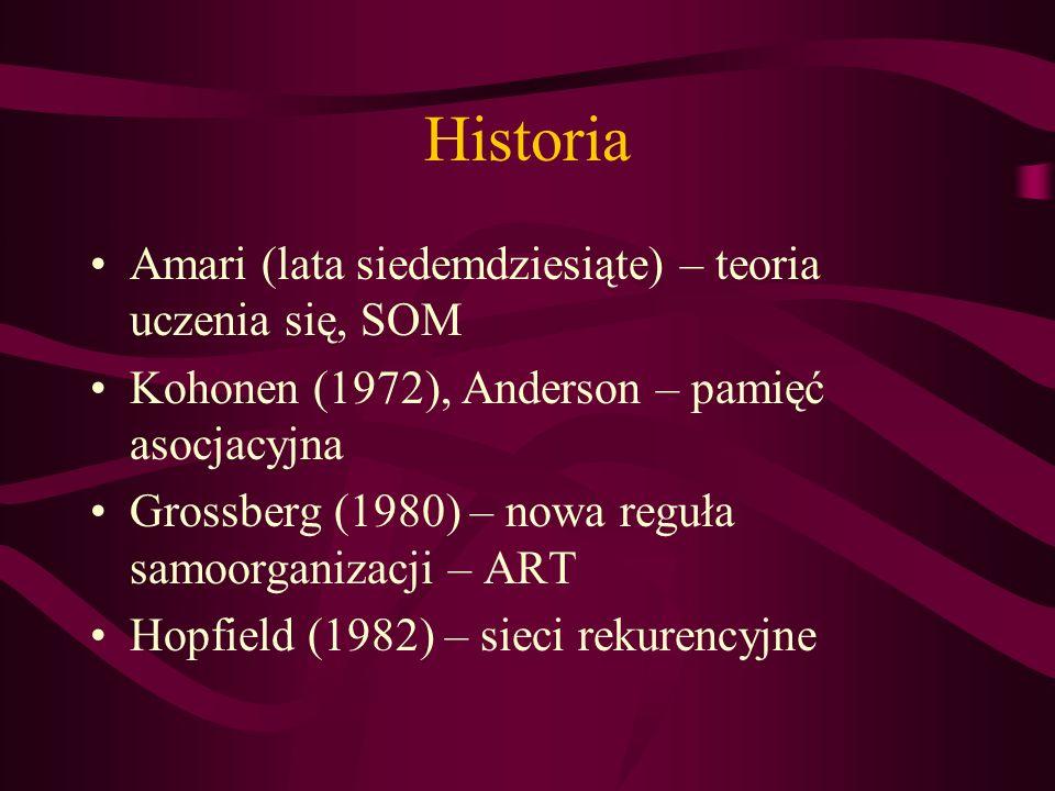 Historia Amari (lata siedemdziesiąte) – teoria uczenia się, SOM