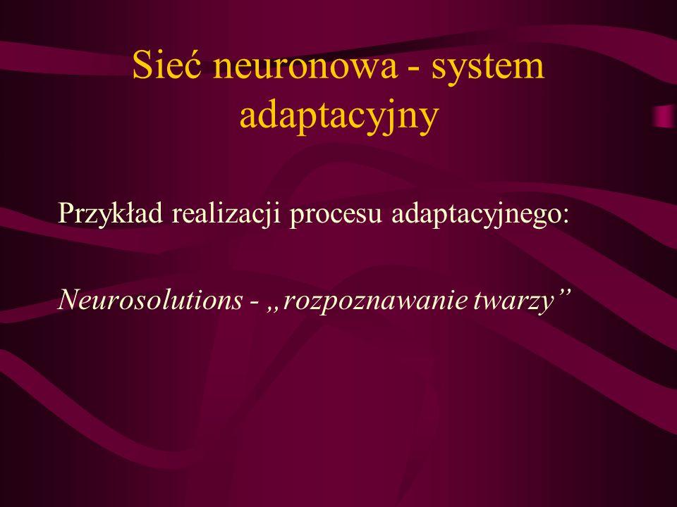 Sieć neuronowa - system adaptacyjny