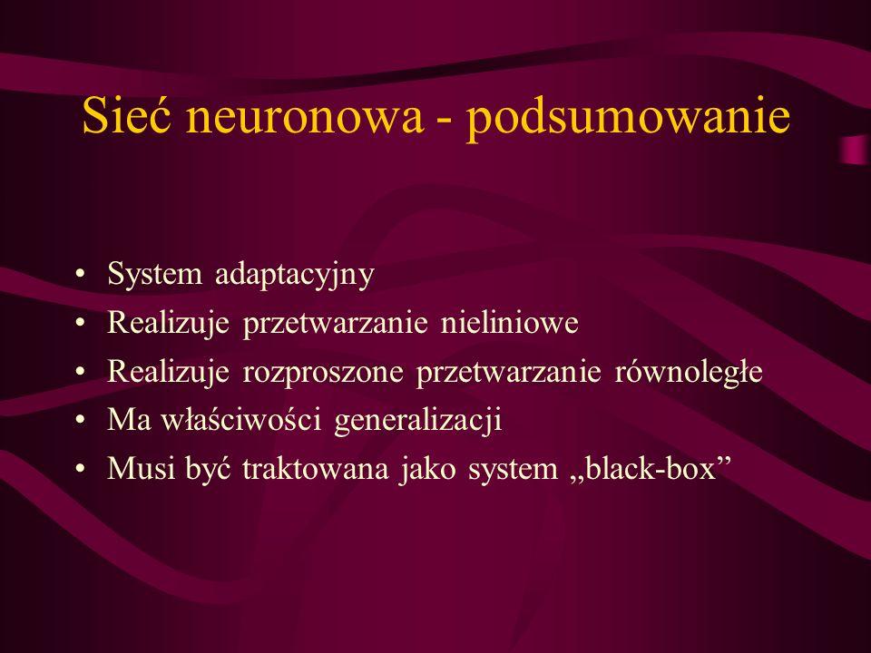 Sieć neuronowa - podsumowanie