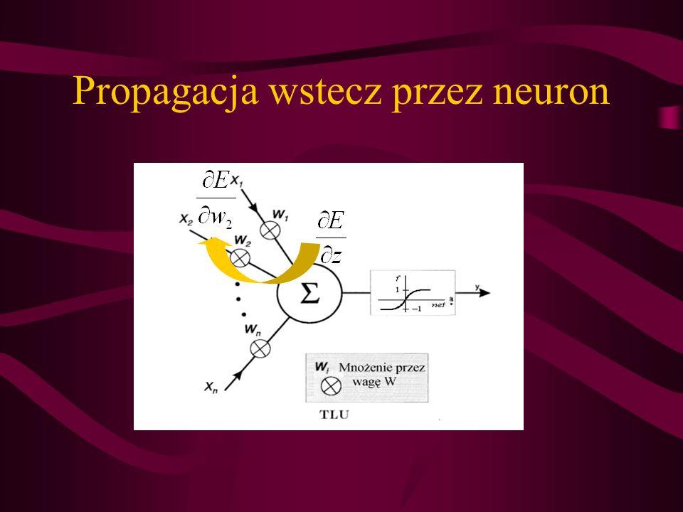 Propagacja wstecz przez neuron