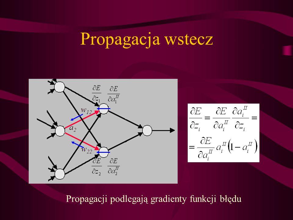 Propagacji podlegają gradienty funkcji błędu