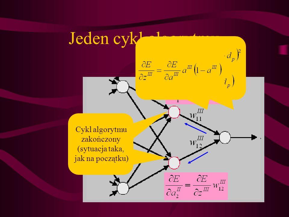 Jeden cykl algorytmu Cykl algorytmu zakończony (sytuacja taka,