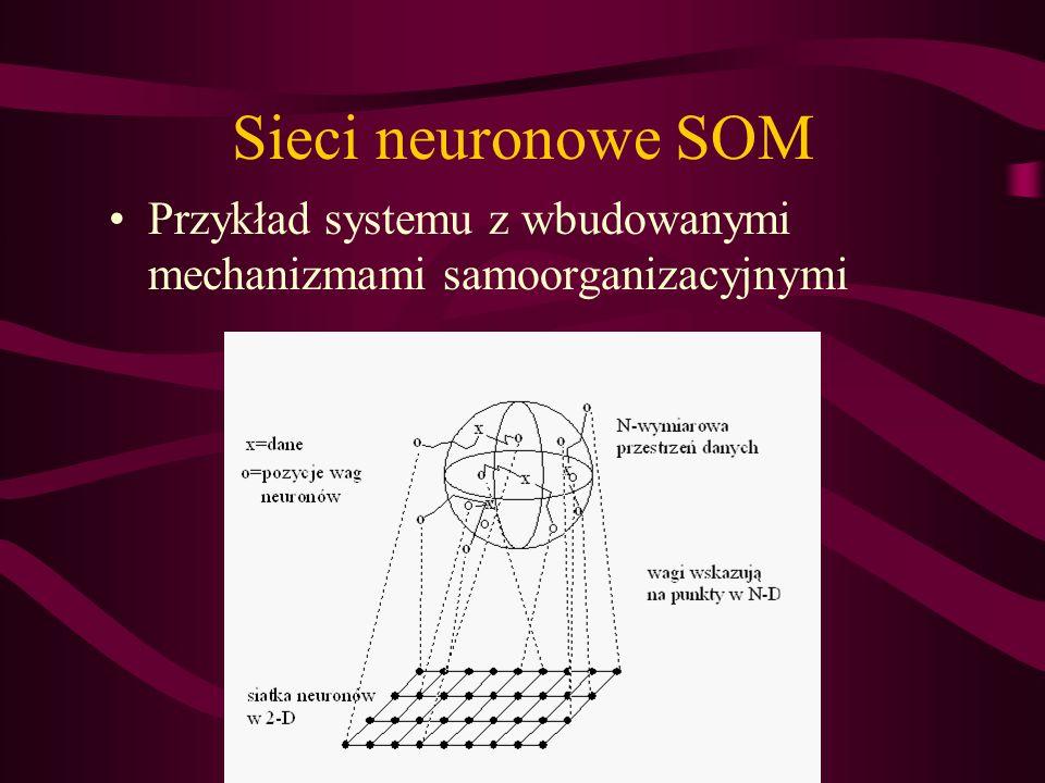 Sieci neuronowe SOM Przykład systemu z wbudowanymi mechanizmami samoorganizacyjnymi