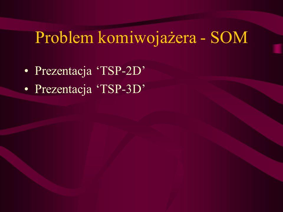 Problem komiwojażera - SOM
