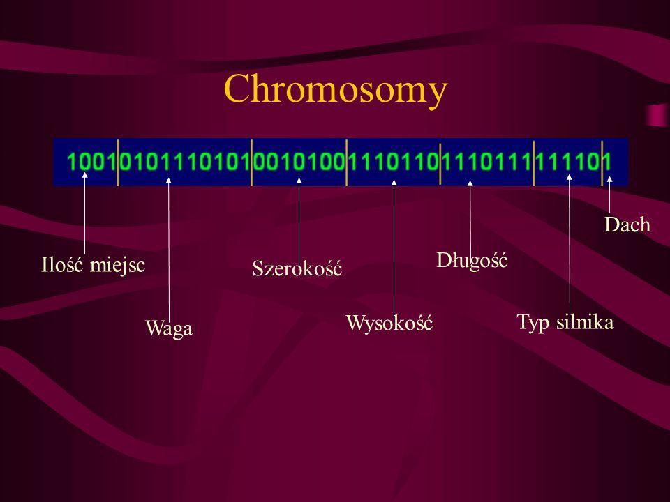 Chromosomy Dach Długość Ilość miejsc Szerokość Wysokość Typ silnika