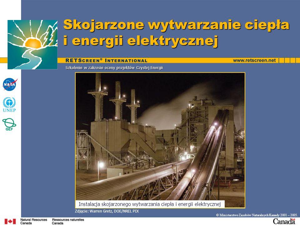 Skojarzone wytwarzanie ciepła i energii elektrycznej