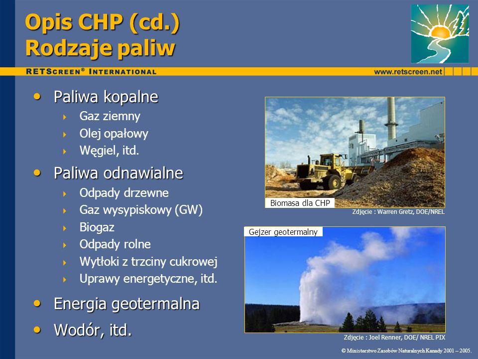 Opis CHP (cd.) Rodzaje paliw