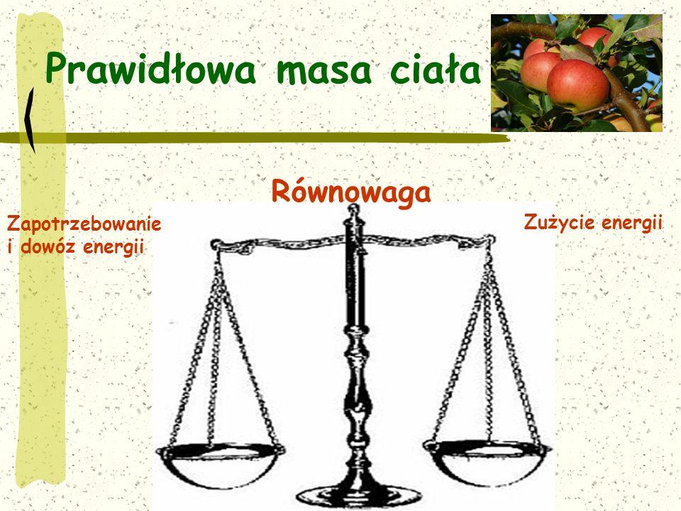 Prawidłowa masa ciała Równowaga Zapotrzebowanie Zużycie energii