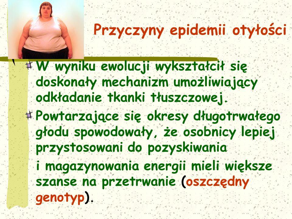 Przyczyny epidemii otyłości