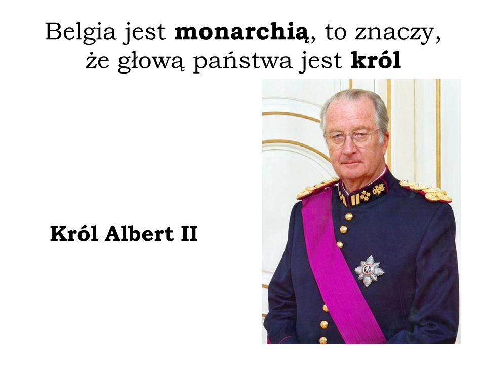 Belgia jest monarchią, to znaczy, że głową państwa jest król