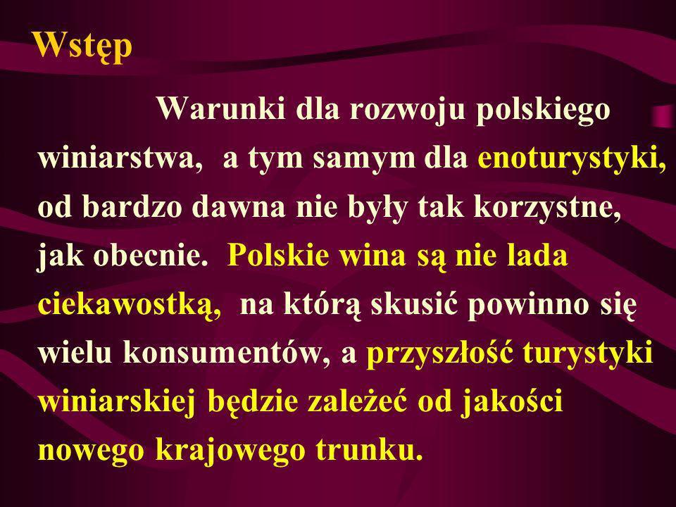 Wstęp Warunki dla rozwoju polskiego