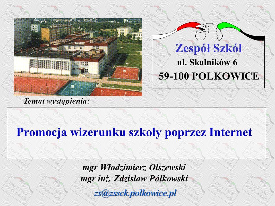 Promocja wizerunku szkoły poprzez Internet