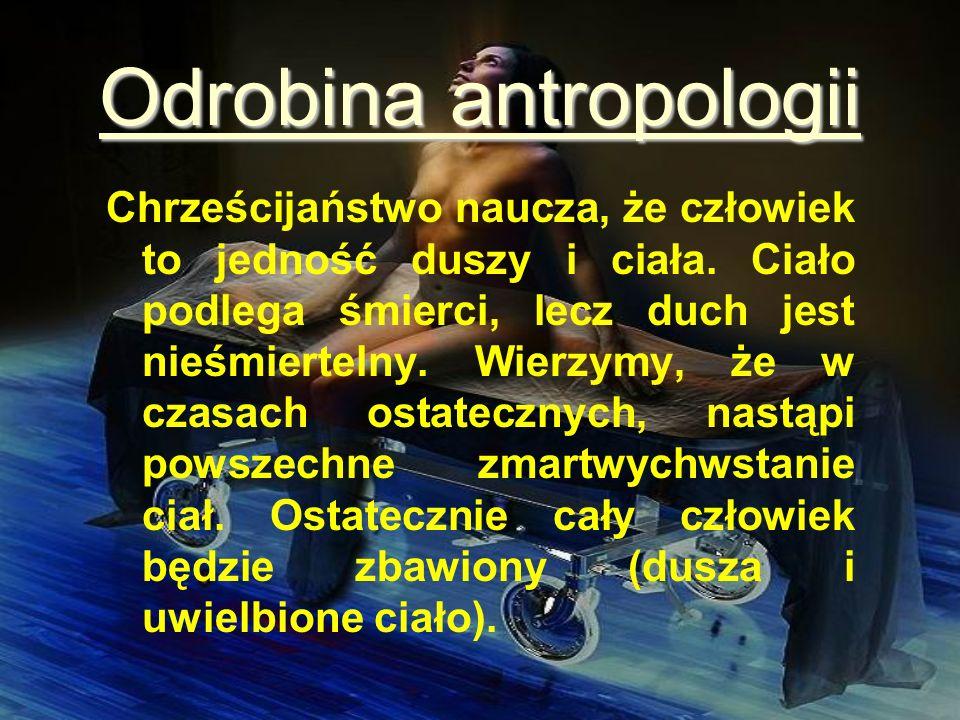 Odrobina antropologii