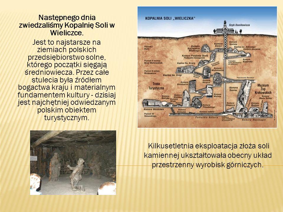 Następnego dnia zwiedzaliśmy Kopalnię Soli w Wieliczce.