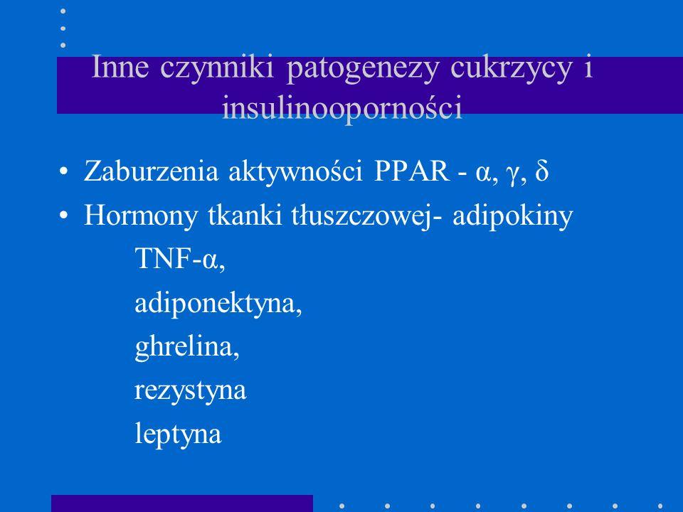 Inne czynniki patogenezy cukrzycy i insulinooporności