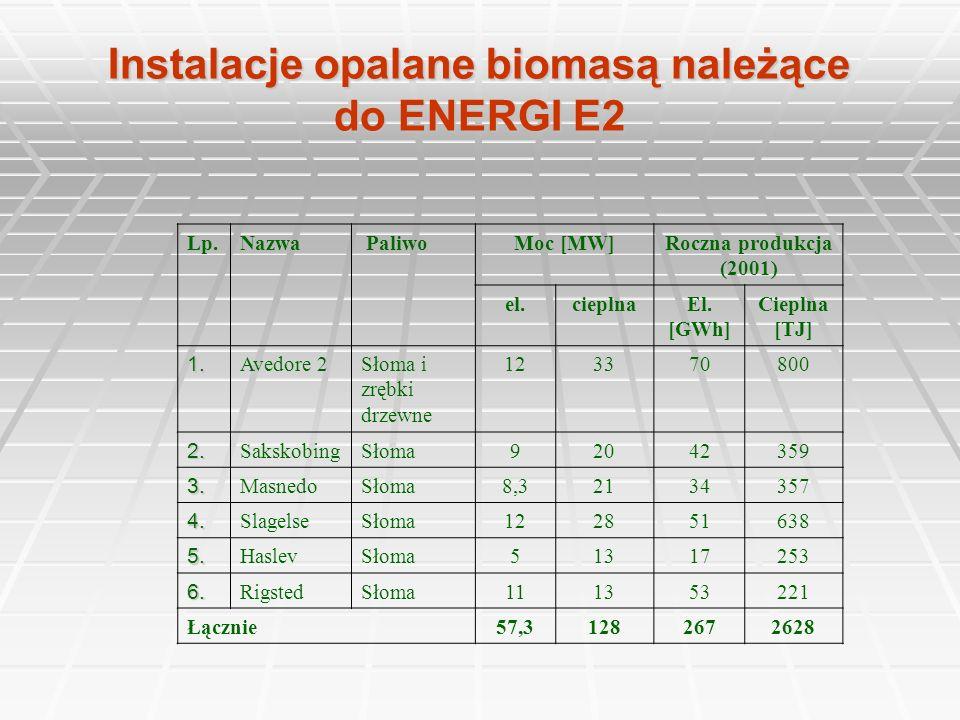 Instalacje opalane biomasą należące do ENERGI E2