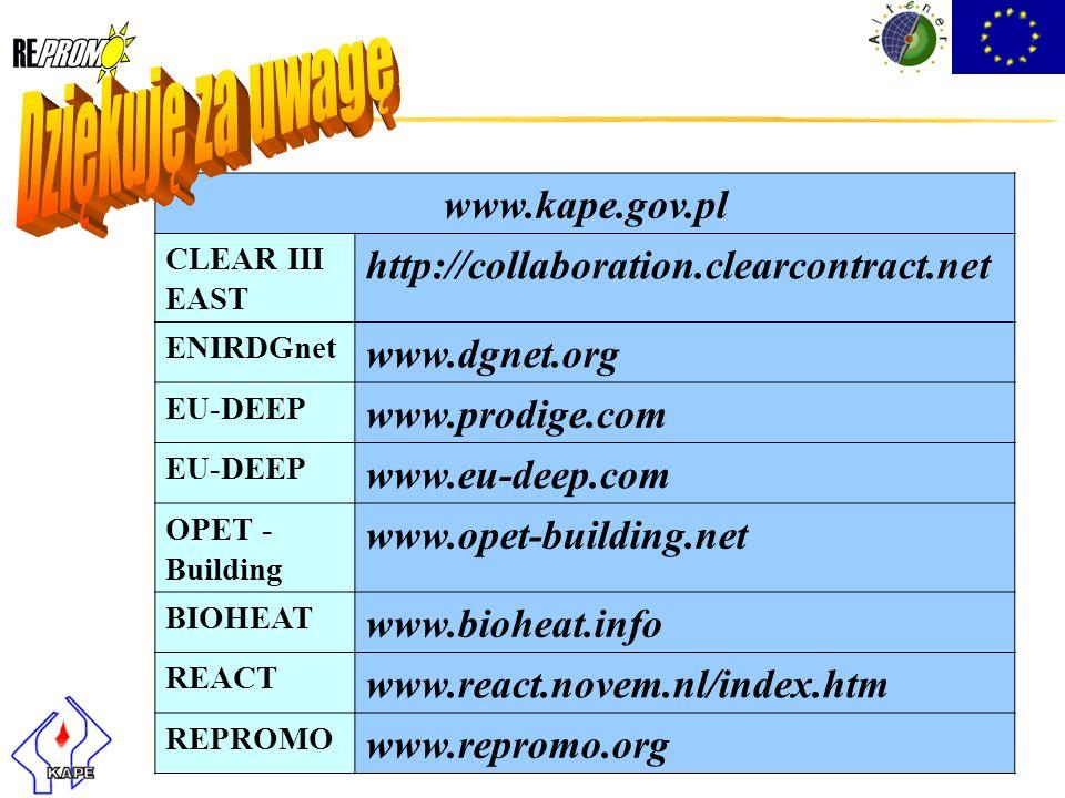 Dziękuję za uwagę www.kape.gov.pl