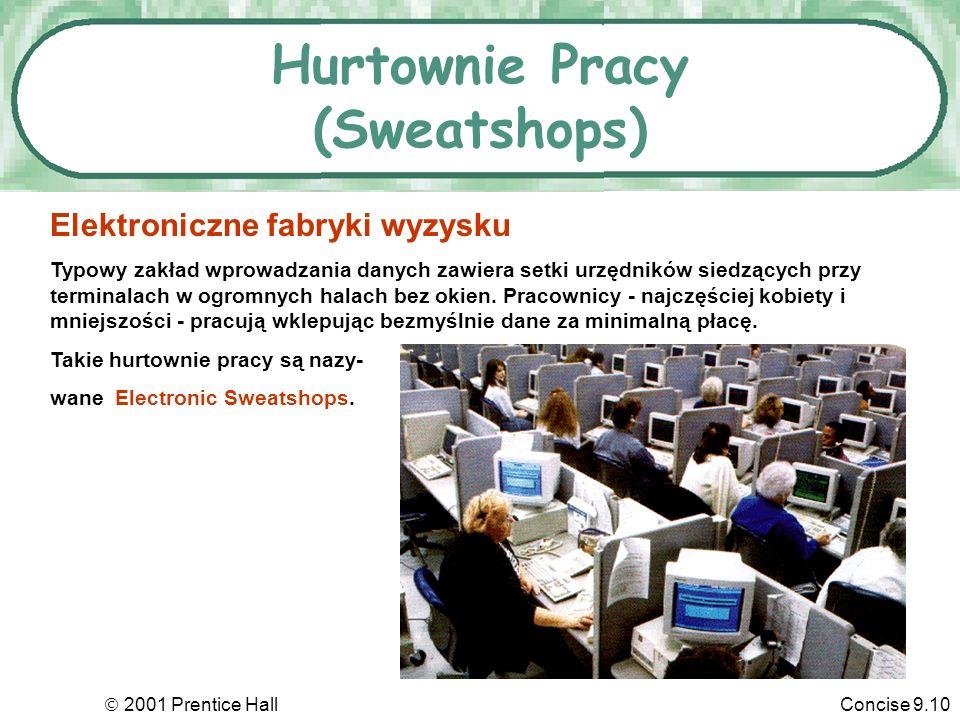 Hurtownie Pracy (Sweatshops)