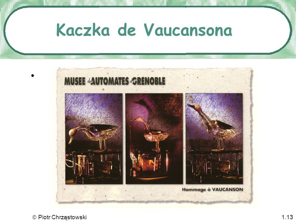 Kaczka de Vaucansona  Piotr Chrząstowski