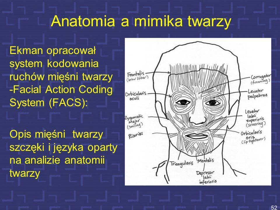Anatomia a mimika twarzy