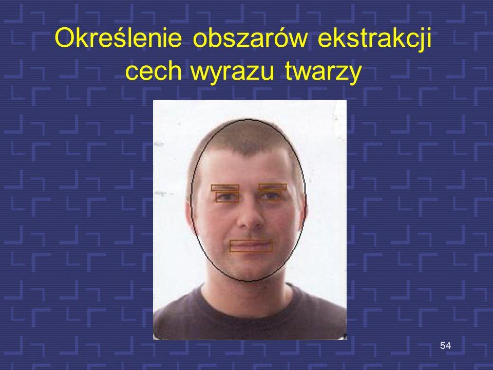 Określenie obszarów ekstrakcji cech wyrazu twarzy