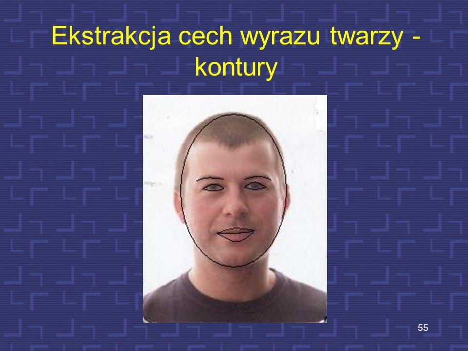 Ekstrakcja cech wyrazu twarzy - kontury