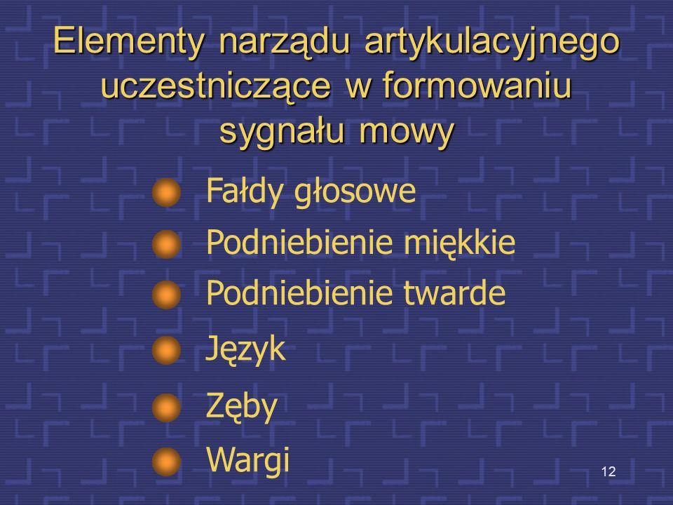 Elementy narządu artykulacyjnego uczestniczące w formowaniu sygnału mowy