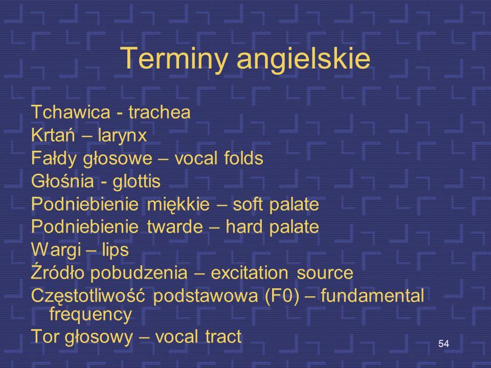 Terminy angielskie Tchawica - trachea Krtań – larynx
