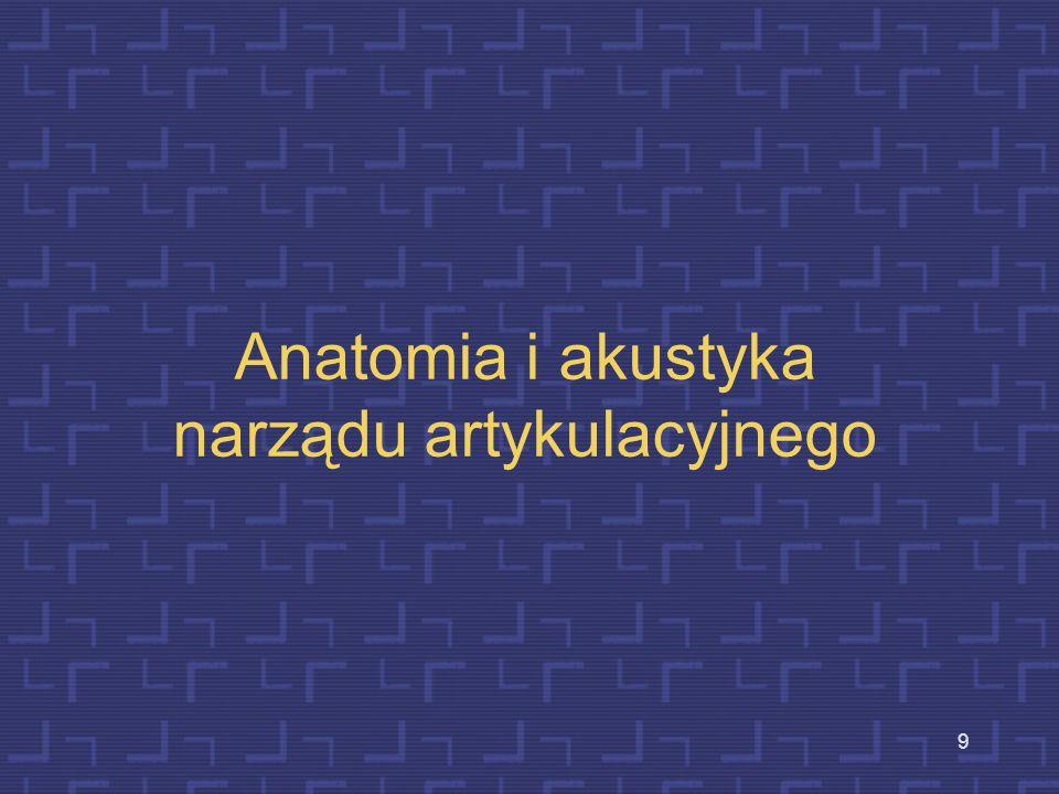 Anatomia i akustyka narządu artykulacyjnego