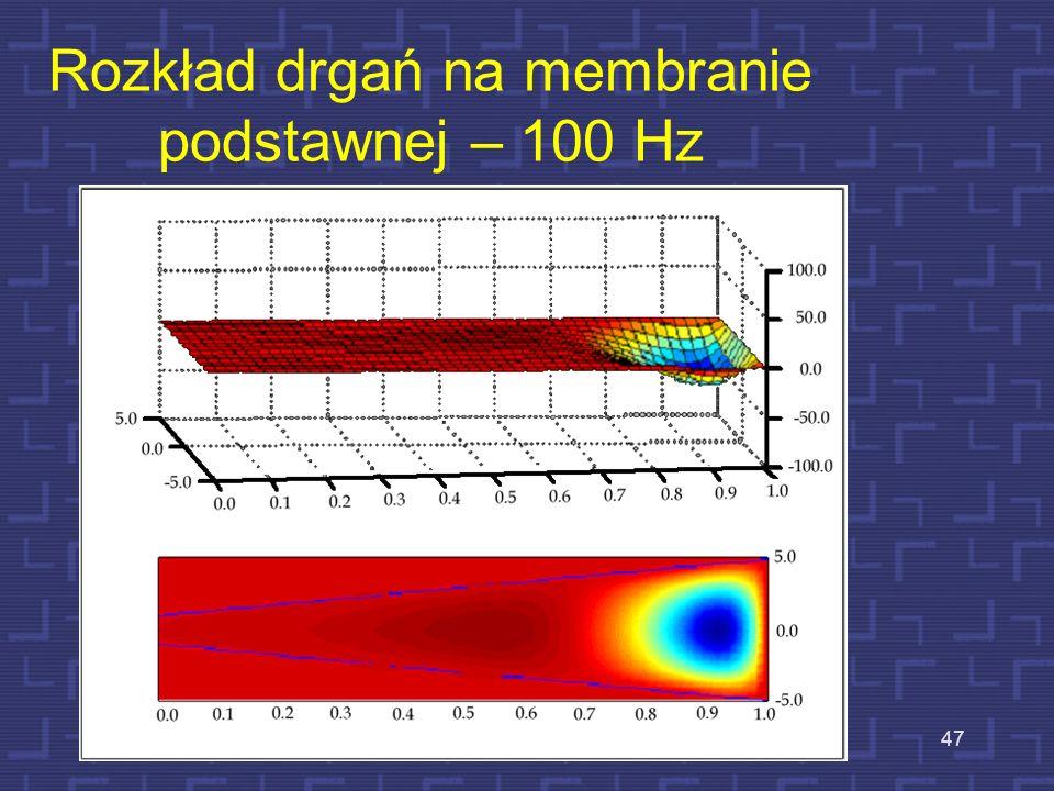 Rozkład drgań na membranie podstawnej – 100 Hz
