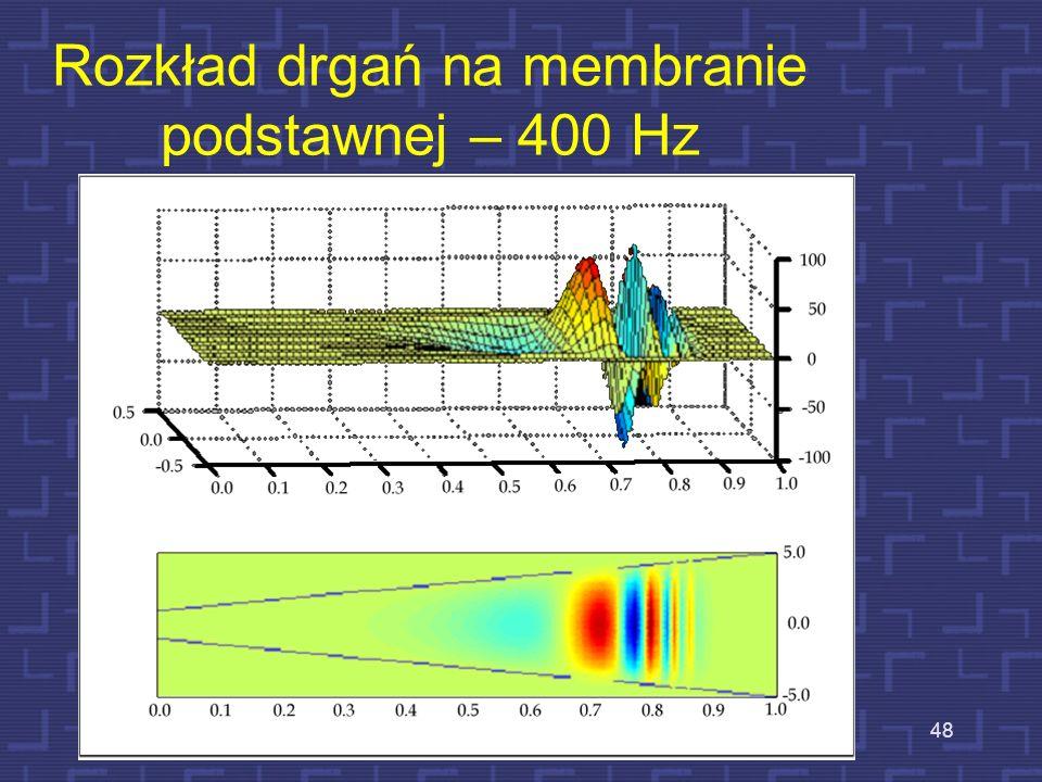 Rozkład drgań na membranie podstawnej – 400 Hz